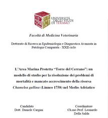 """Cargini D., L'Area Marina Protetta """"Torre del Cerrano"""": un modello di studio per la risoluzione dei problemi di mortalità e mancato accrescimento della risorsa Chamelea gallina (Linneo 1758) nel Medio Adriatico, 2010"""