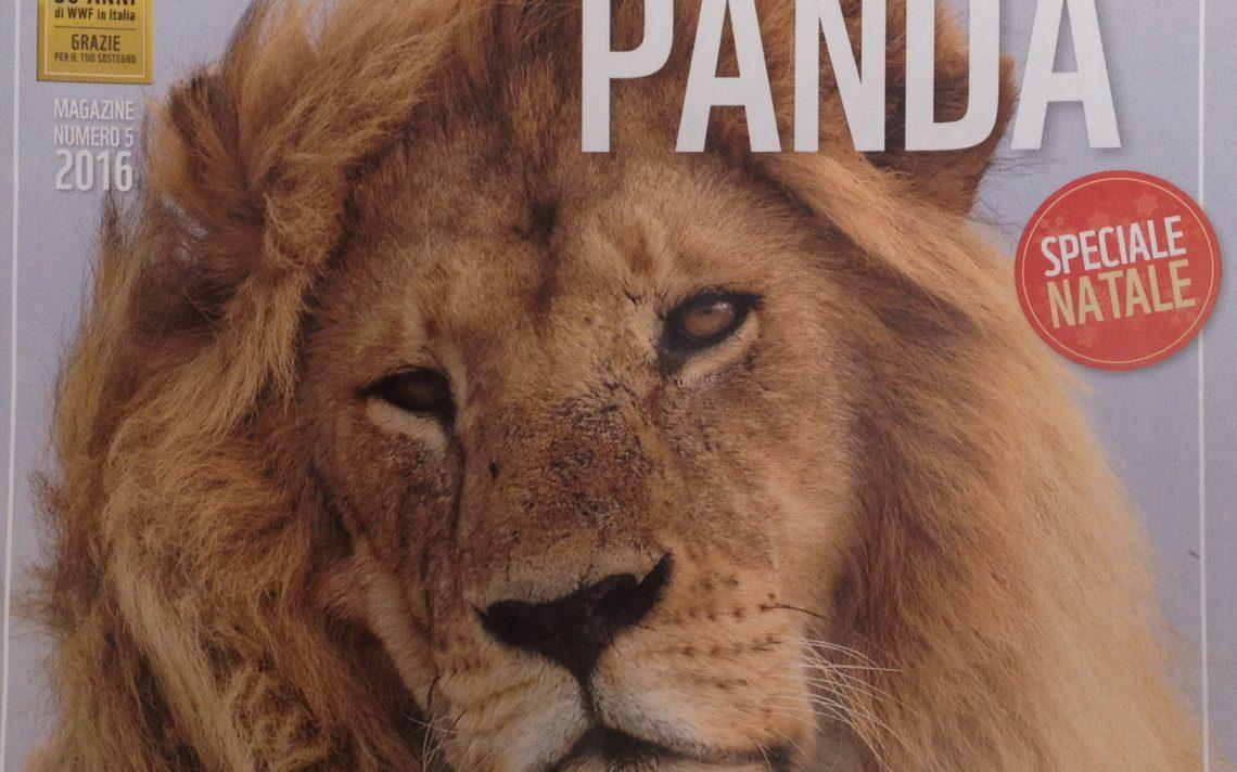 copertina-pandan-5-2016