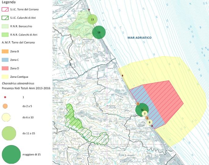 Mappa nidi AMP e Borsacchio